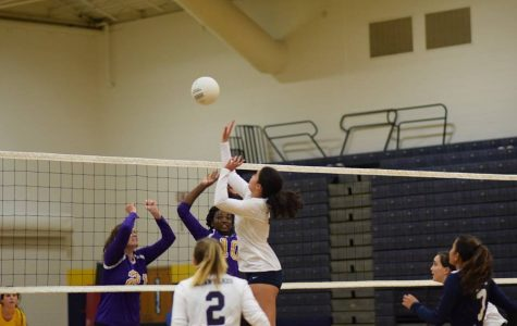 Lady dolphins win volleyball game against Tallwood