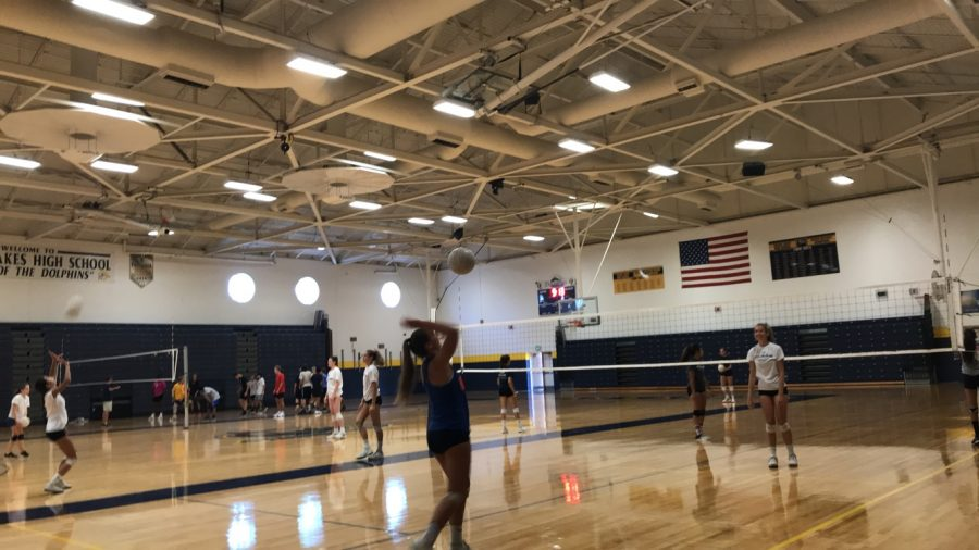Ally+Zongolowicz+serves+a+volleyball+on+the+new+gym+floors.+