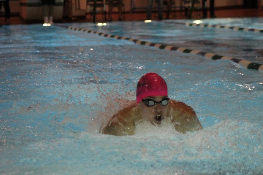 Junior+Ethan+Comeyne+swims+the+butterfly+stroke+in+a+meet+on+Jan+3.+at+the+Princess+Anne+Recreation++Center.