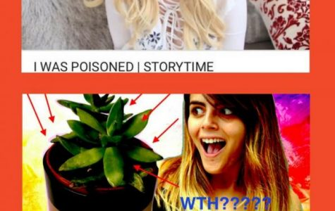 Youtube videos influence today's teens, provides source for mimic