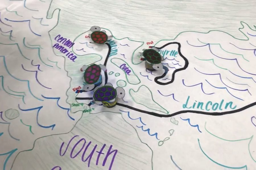 Students decorated ozobots to look like sea turtles and used them to trace migration patterns.