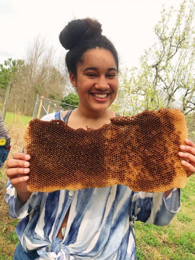 Lexi Thomas holds some honeycomb.
