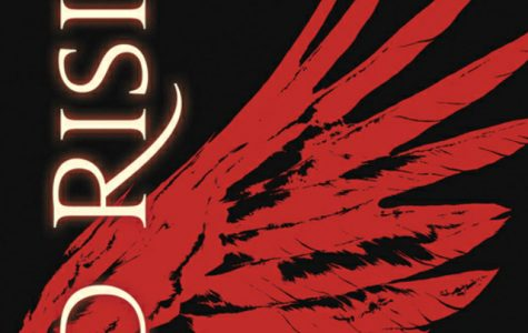 Red Rising explains the aftermath of large-scale warfare