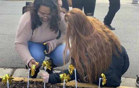 Pinwheels placed to embody student legacy
