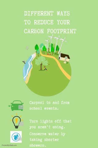 Carbon footprint, a walk towards reduction of climate change effects