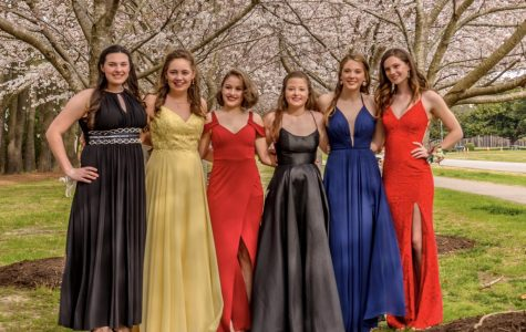 Juniors (from left to right) Kaleigh Ritz, Savannah Burdsal, Sofia Kuhn, Isabella Fox, Elle Herr, and Madelyn Pitcher smile for Ring Dance pictures at Red Wing Park on March 30.