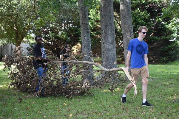 Left to right: Seniors Isaiah McKinney, Mariko Hart, and Seth Brand carry tree branch at NHS' park cleanup on Sept. 20.