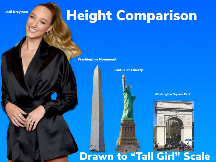 """Tall Girl"" appears height of bad Netflix originals"