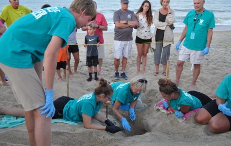 Father-daughter lecture sheds light on sea turtle nesting