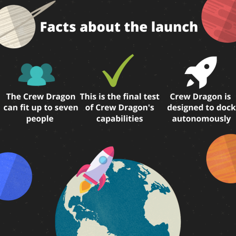 Above displays an infographic that contains facts and information about SpaceX